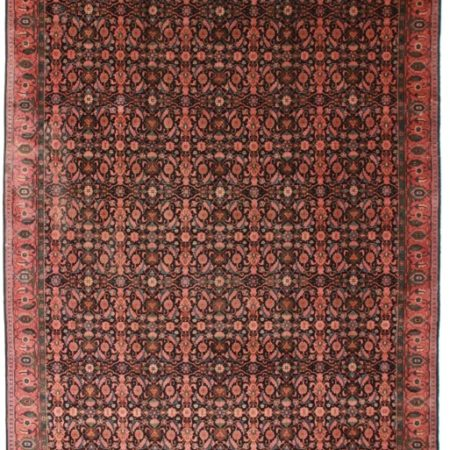 Antique Indian 10x20 Rug 7374