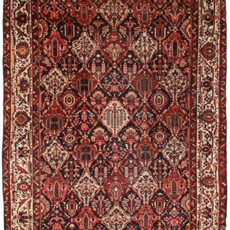 Persian Baktiari 11x15 Rug 14159
