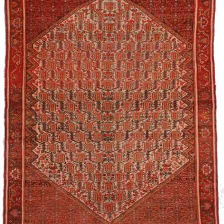 Antique Persian Senneh 5x6 Wool Oriental Rug 8585