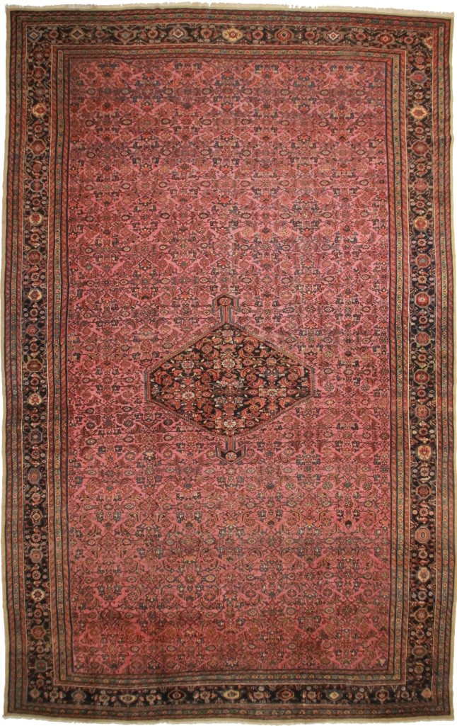 Large Persian Hamedan 13x21 Oriental Rug 1736
