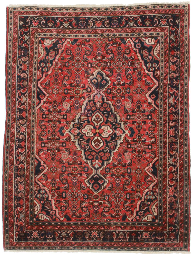 Persian Hamedan 4 x 7 Oriental Rug 4311
