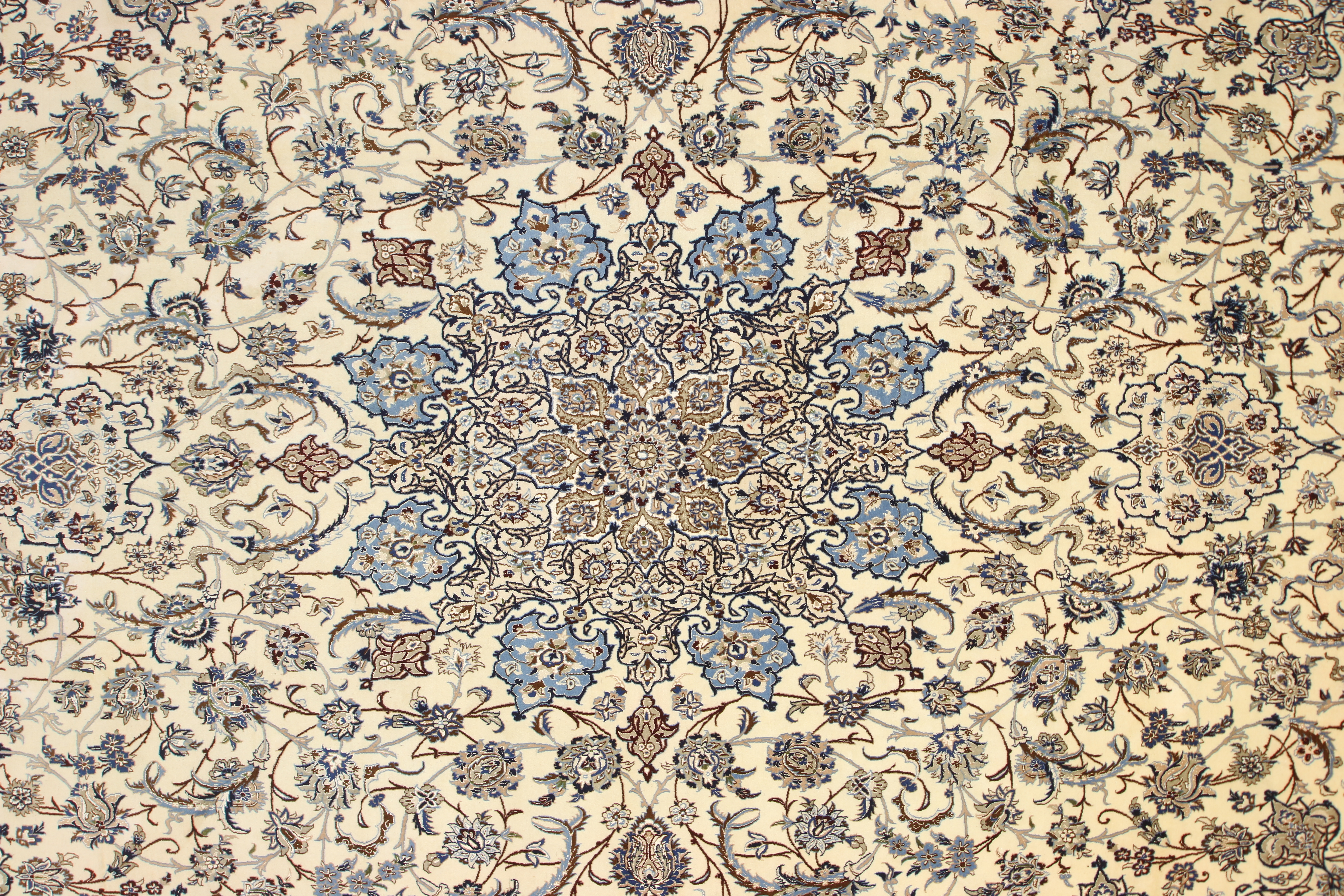 area dsc rugs tree of silk life gumbh rug rugsandbeyond
