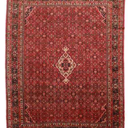 11 x 14 Persian Hassan Abad Rug 10078